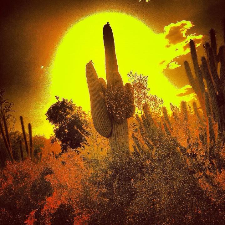 """""""Arizona's Grandeur"""""""