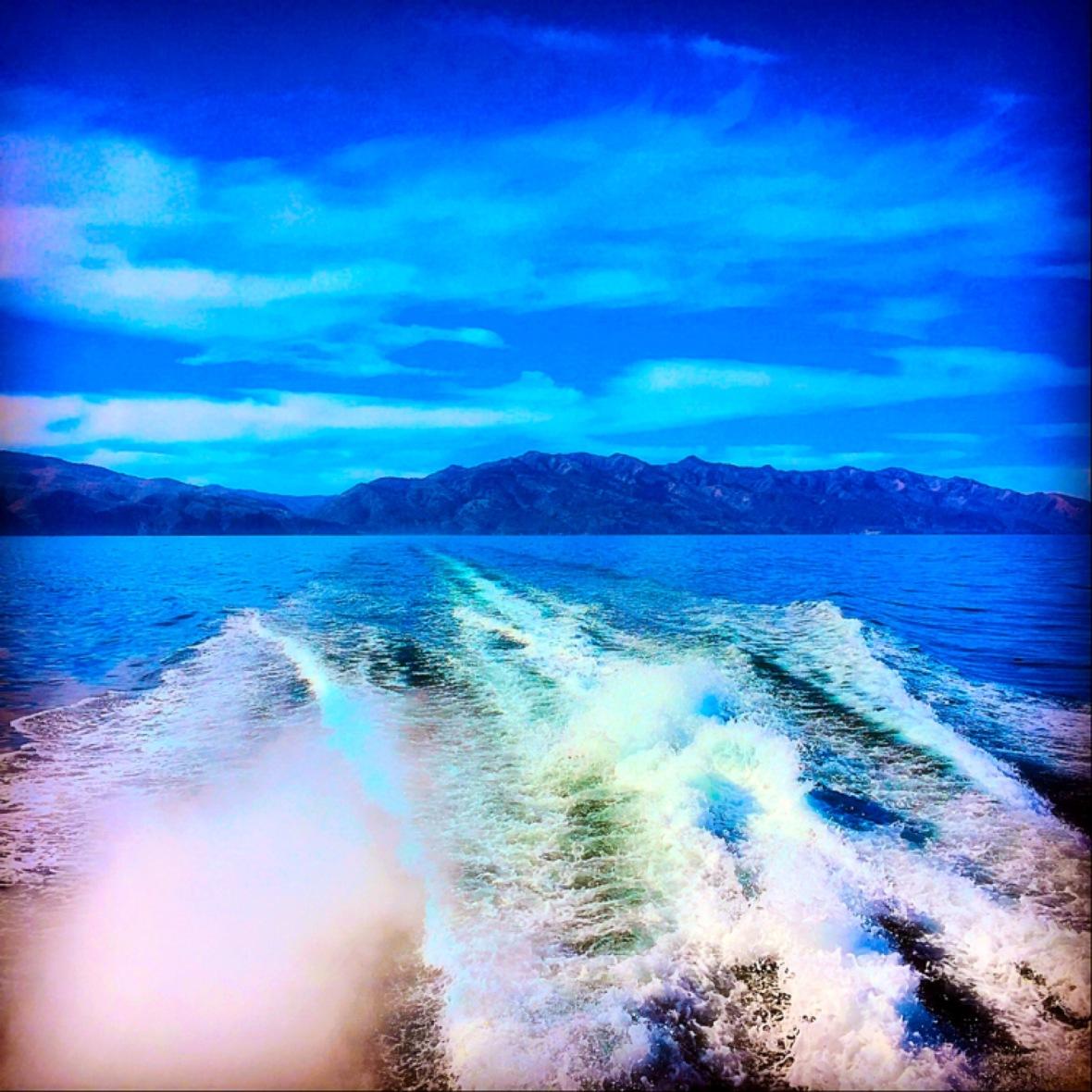 """We Part in Sweet Sorrow"" (Santa Cruz Island, CA)"