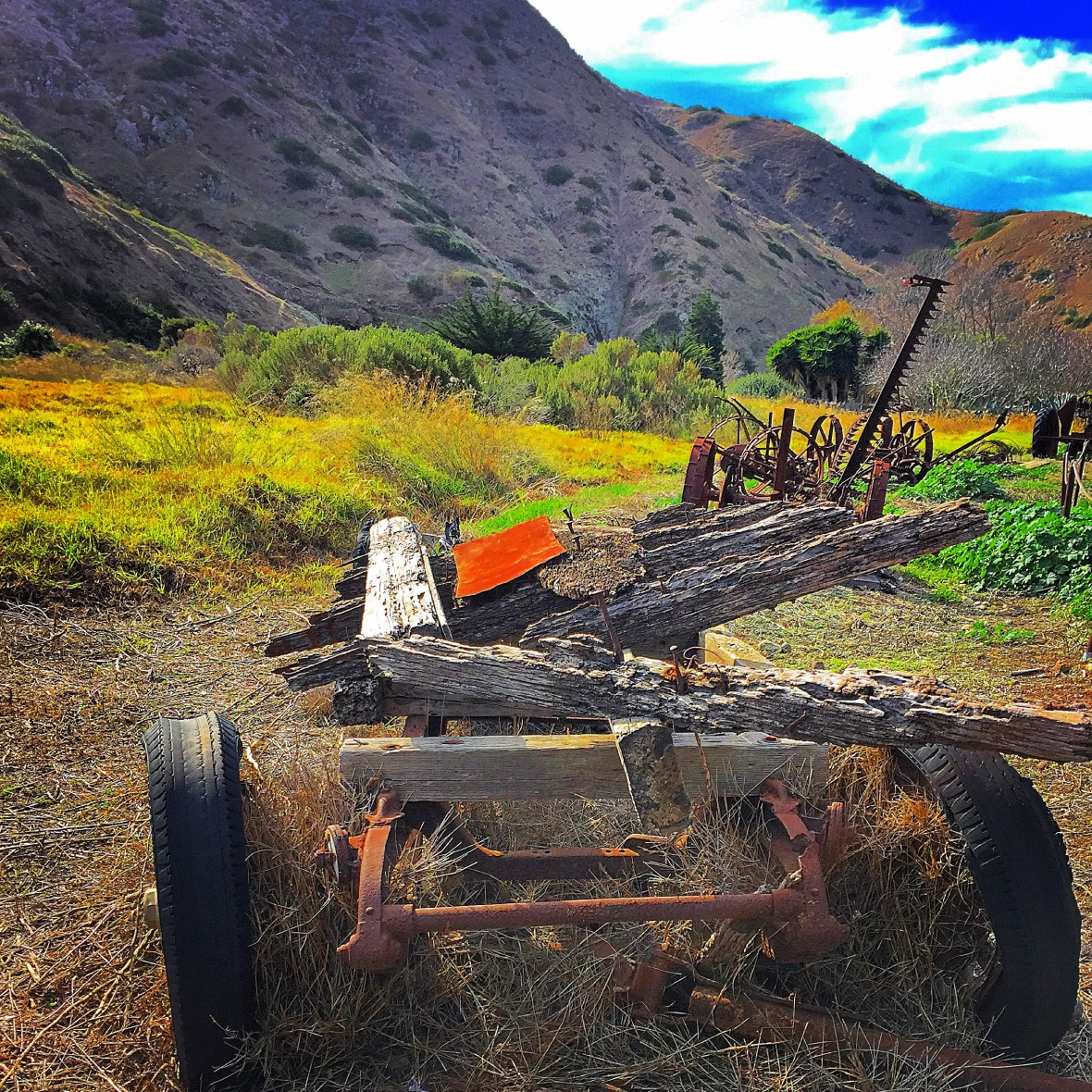 """The Days of Old"" (Santa Cruz Island, CA)"
