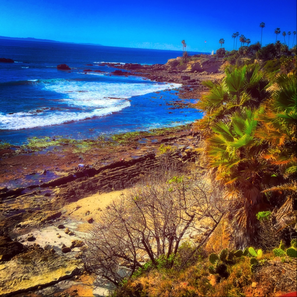 """A View to Cherish"" (Laguna Beach, CA)"