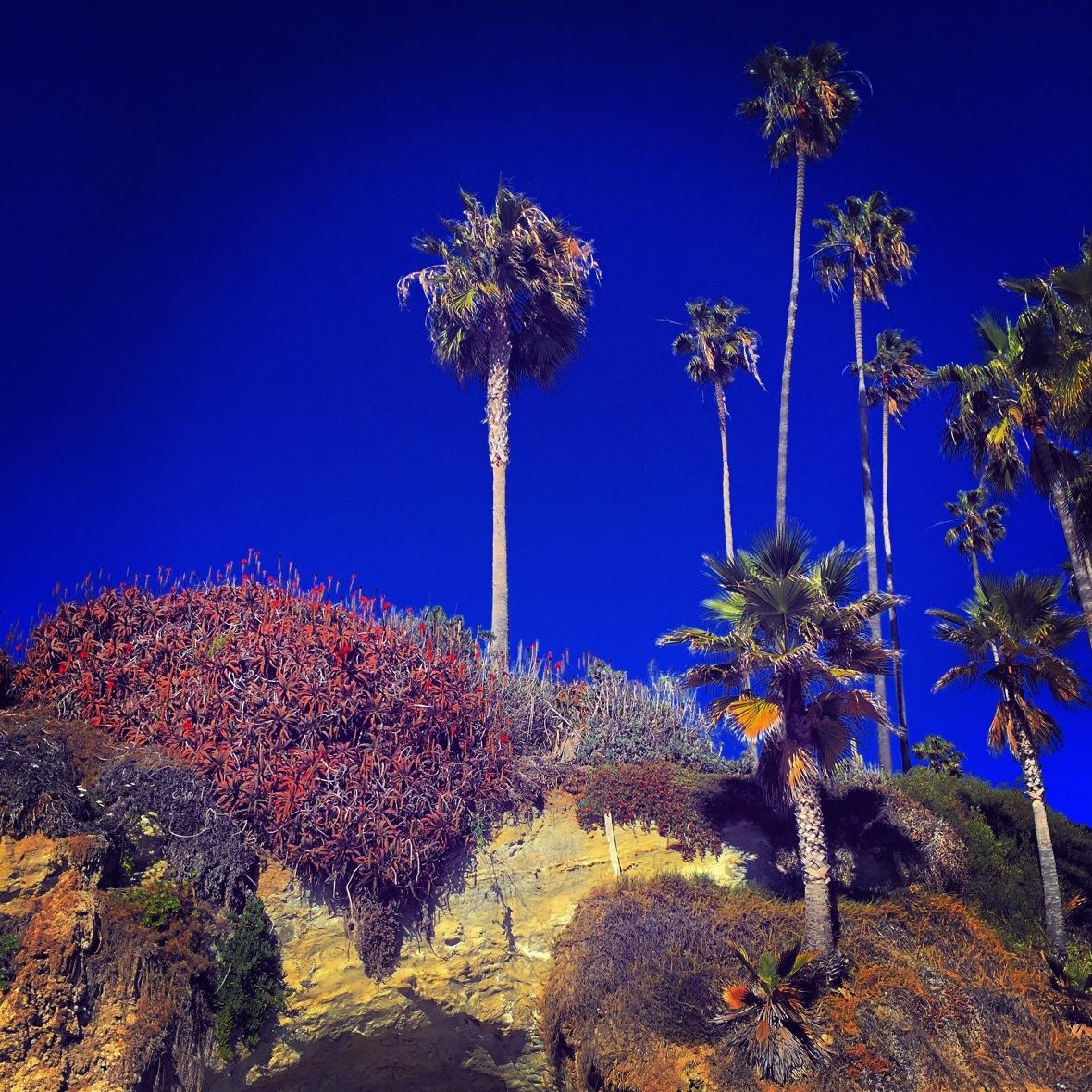 """Upon the Hill, the Sea Below"" (Laguna Beach, CA)"