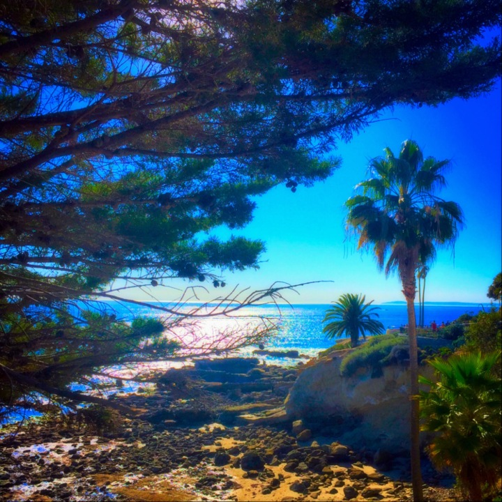 """Through the Eyes, I See the Beauty"" (Laguna Beach, CA)"